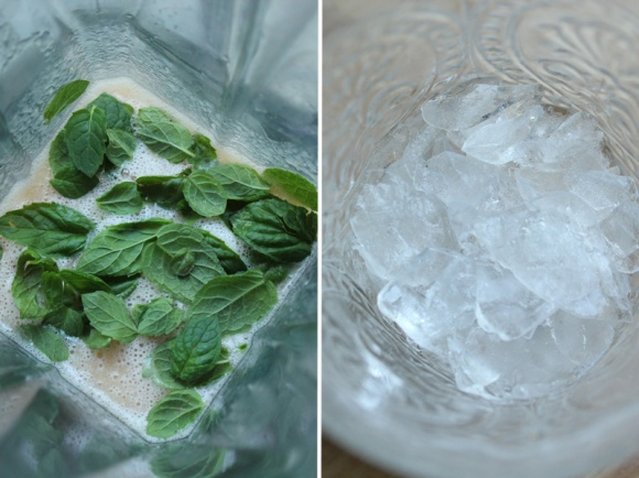 Grapefruit-Ginger-Mint-Spritzer-Prep-Double